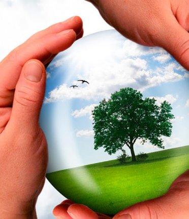 A importância da responsabilidade social nas empresas