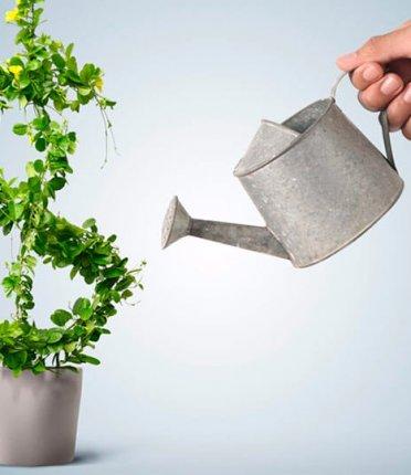 O que é e como funciona o capital de giro?